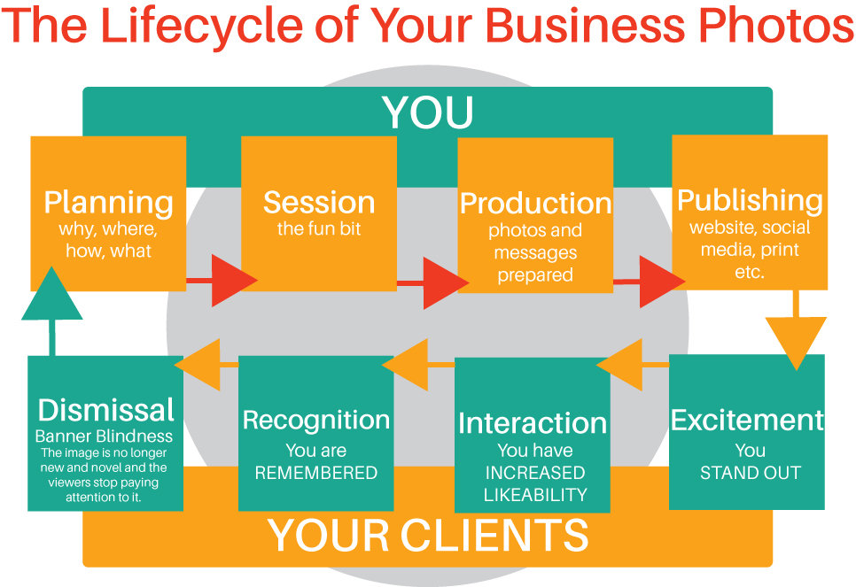 Understanding the lifecycle of your business photos by Pille Repnau from The Perth Personality Photographer